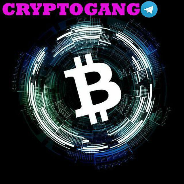 CRYPTO GANG - Cripto PUMPs